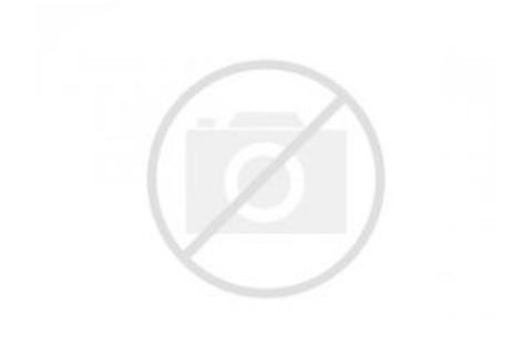 Minifigure DFB Series (Box of 60)